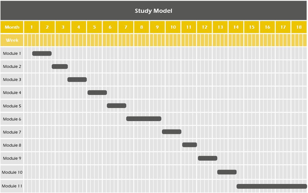 Study Model MBA